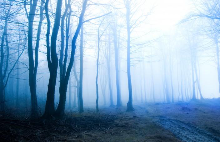 El miedo que nos enferma y la Homeopatía que nos cura