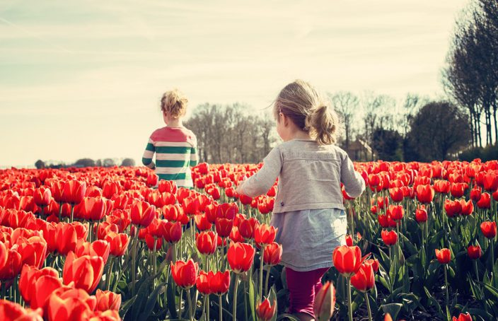 Homeopatía y alergia primaveral: 10 medicamentos homeopáticos útiles en la alergia al polen