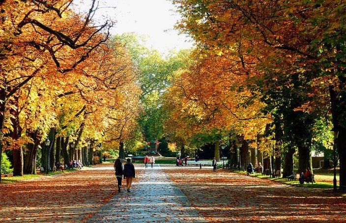Enfermedades más frecuentes en el otoño y su tratamiento con homeopatía