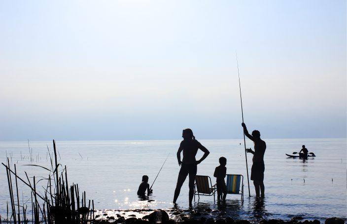 Homeopatía en el verano: picaduras de mosquitos, las otitis, las medusas