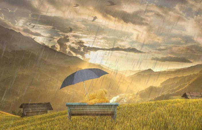 Lo que el viento de la Covid se llevó de nuestras vidas